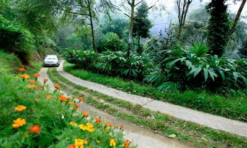 On the Road to Thekkady